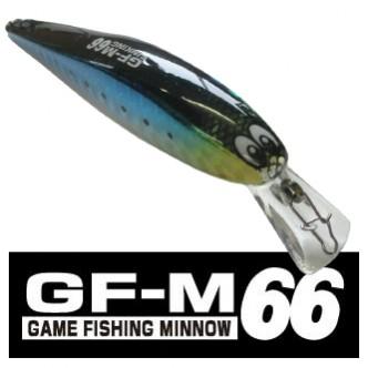 GF-M66SPEC画像