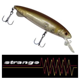strangeSPEC画像
